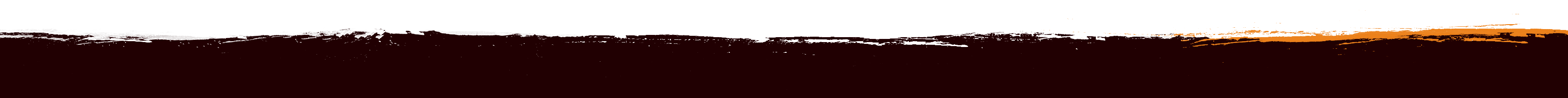 Terms and Conditions – Dirty Reiver